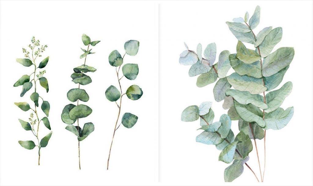 Stampe botaniche: laboratorio con Alessandra Ferrà
