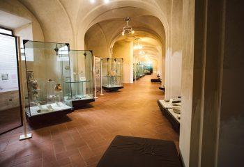 Portoferraio - Museo Archeologico della Linguella
